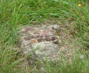Fragment of Roman pavement, tesserae